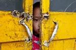 Детям мигрантов могут запретить учиться в школах