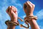 Свобода совести вРоссийской Федерации: 2013 год | «Россия для всех»