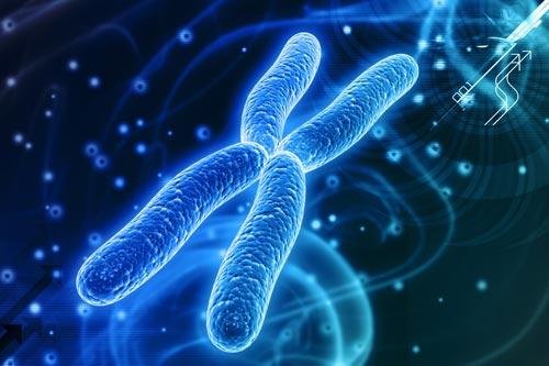 Геном как персональные данные | «Россия для всех»