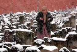72-я годовщина депортации чеченцев и ингушей в Санкт-Петербурге | «Россия для всех»
