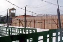 Н.Толоконникова: «ВМордовии, слюдьми творят страшное»